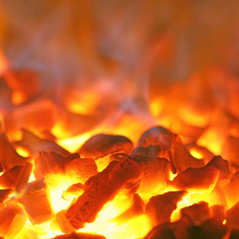 فحم قوالب جوز الهند الطبيعي اندونيسي DPT عبوة 10 كيلو